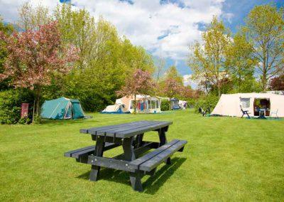 comfort-kampeerplaatsen-de-uitwijk (5 van 8)