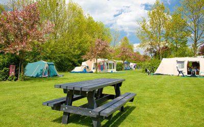 Characteristic green camping
